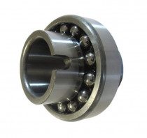 ZEN 11205-TN naklápěcí kuličkové ložisko - N1